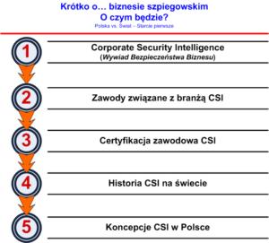 Wywiad Bezpieczeństwa Biznesu - Spis treści