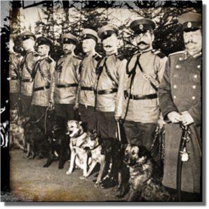 Psy Ochranki OSS Szpiegul CSI